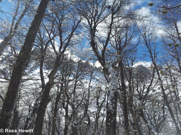 Frey Cerro Catedral Bariloche Patagonia Ski South America 11