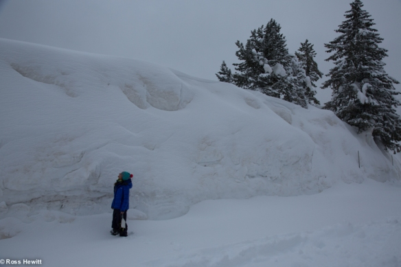 Dolomites ski-25
