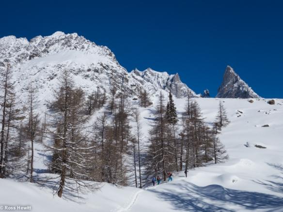 NE Couloir Petit Mt Blanc