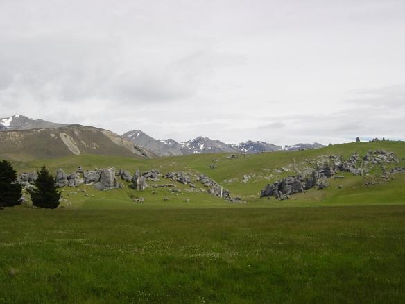 Quantum Field Arthur's Pass