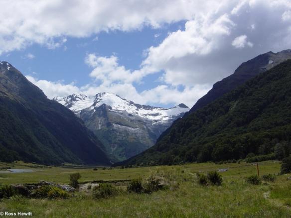 New Zealand 2006-85