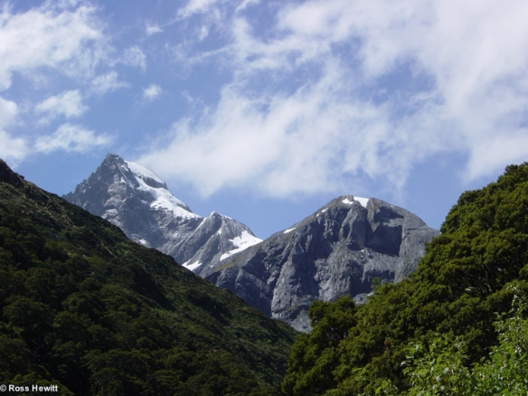 New Zealand 2006-87