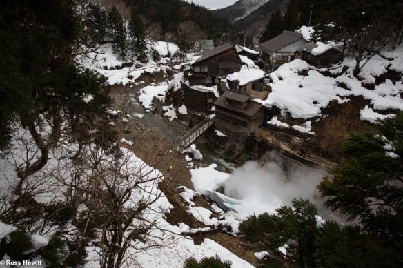 Japan Hewitt Blaydon-18